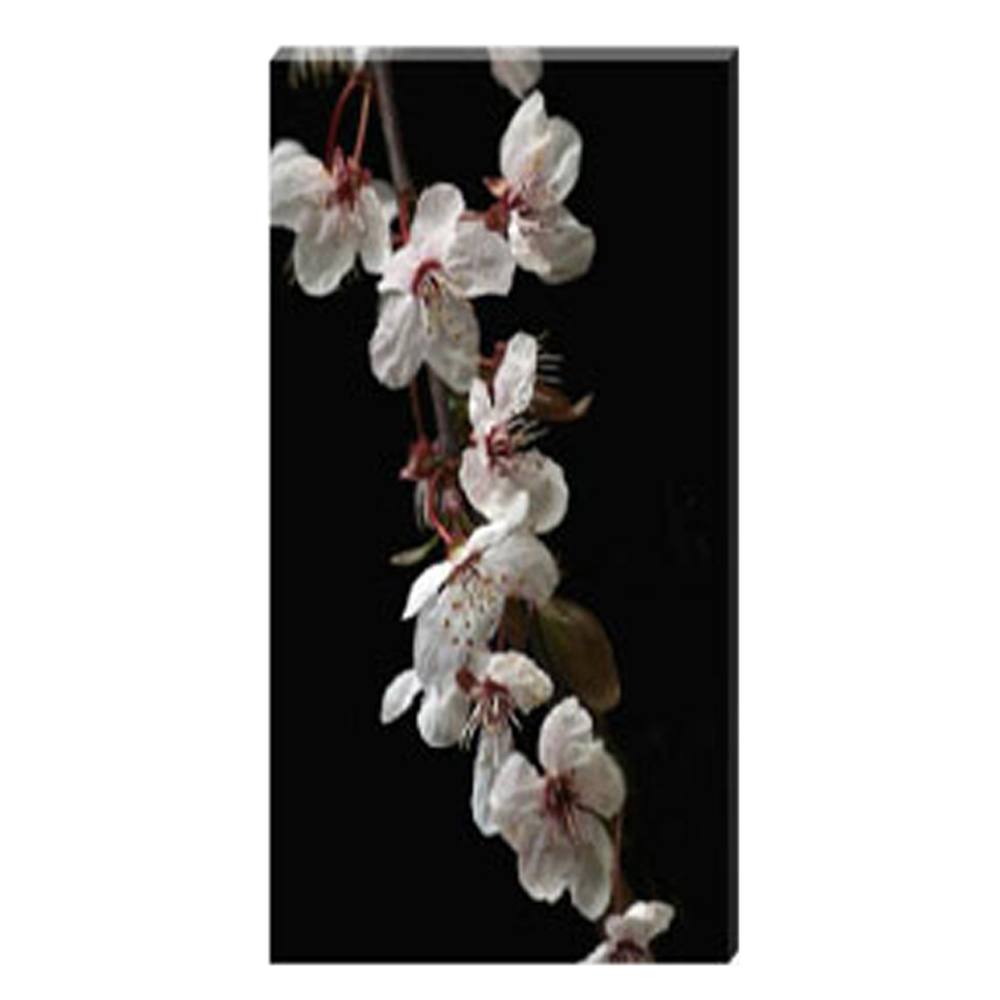 Cherry Blossom Cascade Stretched Canvas by Celia Henderson LRPS