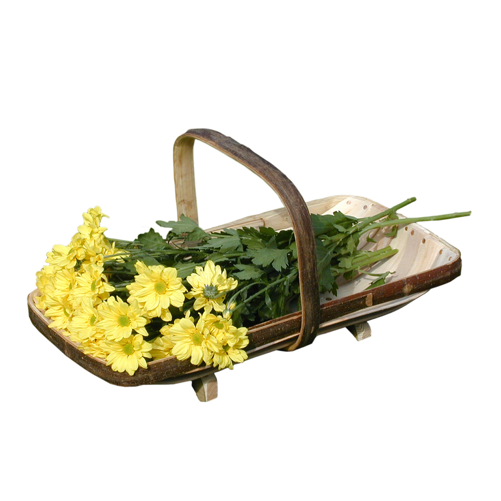 The Royal Sussex Trug - Flower Trugs Size 3