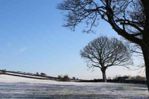Derbyshire Gentle Slopes and Trees in the Snow