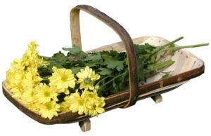 Royal Sussex Flower Trug